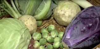 Agrosaveti - Integralna Proizvodnja Povrća 01
