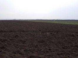 Agrosaveti - Oplemenjivanje U Organskoj Proizvodnji 01
