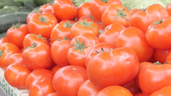 Agrosaveti - Prednosti domaćeg paradajza 01