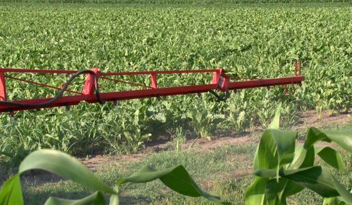 Agrosaveti - Priprema Prkalica 02