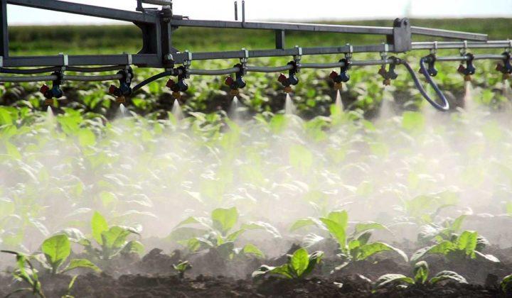 Agrosaveti - Priprema Prkalica 04
