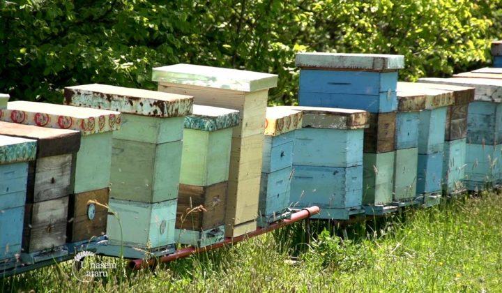Agrosaveti - Sajam pčelara Vojvodine 03