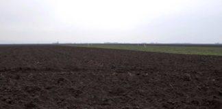 Agrosaveti - Atar