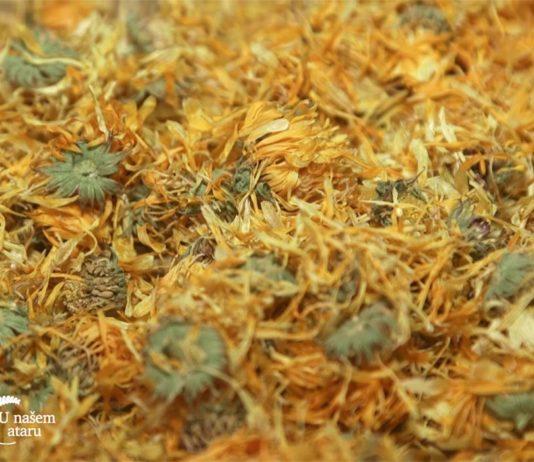 Agrosaveti - lekovito bilje 07