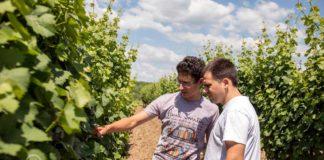 Agrosaveti---Adama---Vinograd---Gudurica---Gatro---Najlepsa-je-moja-njiva-02