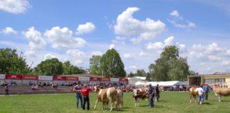 Agrosaveti - Dan stocara na novosadskom poljoprivrednom sajmu 01