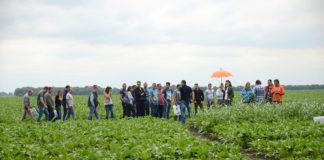 Agrosaveti - Dani polja secerne repe Sunoko 01