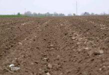 Agrosaveti - Drzavno poljoprivredno zemljiste 01