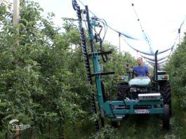 Agrosaveti - Masina za rezidbu voca 05