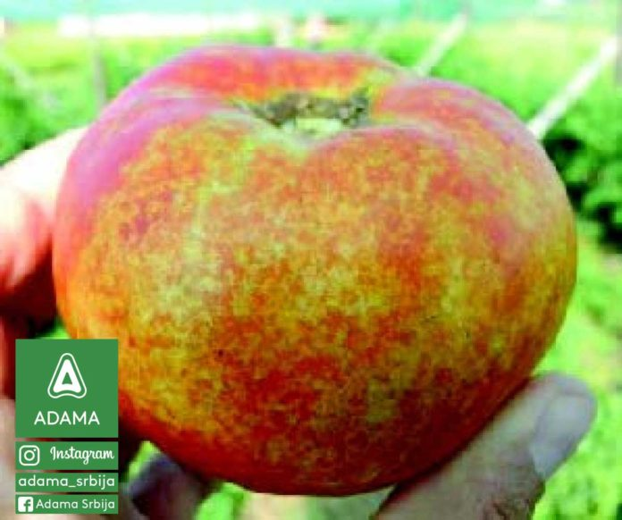 Agrosaveti---Adama---Breskva---Nezera-Vinudula---Zelena-Stenica-