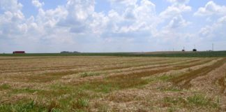 Agrosaveti - IPARD prednosti i nedostaci 04