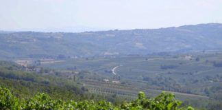 Agrosaveti - Najmlađi vinar u Šumadiji 05