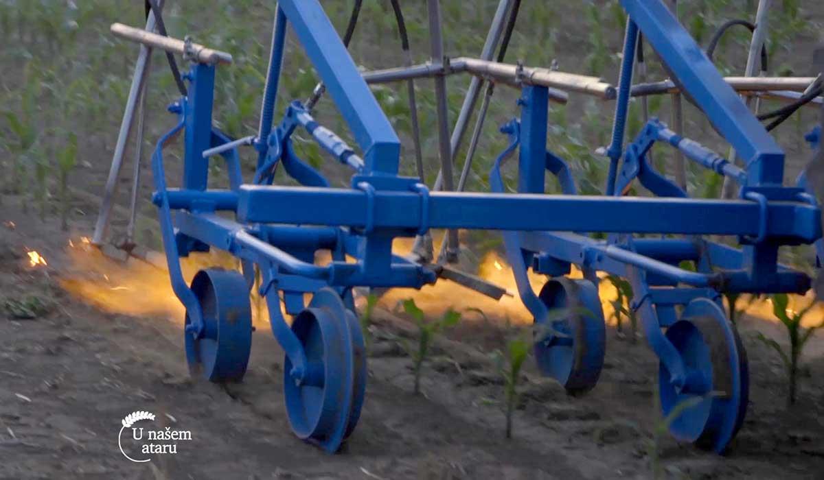 Agrosaveti - Suzbijanje korova plamenom 04