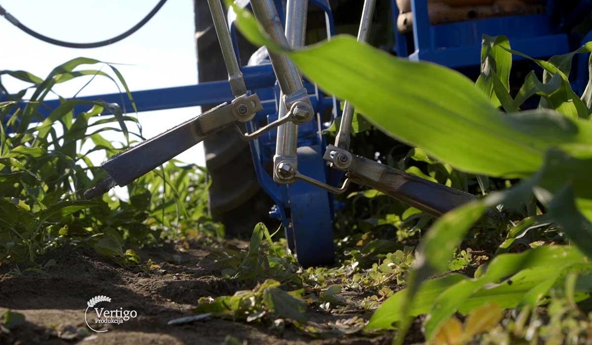 Agrosaveti - Suzbijanje korova plamenom 07