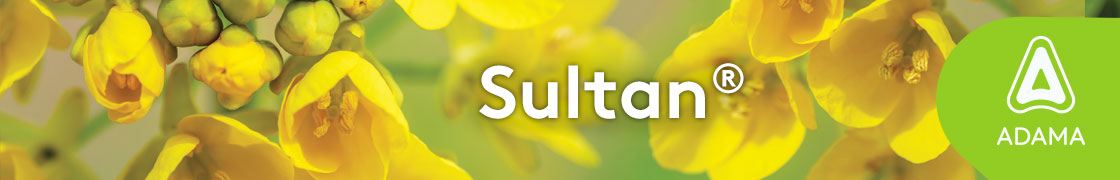 2-Vertigo-Sultan-1120x180