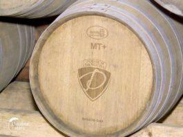 Agrosaveti - Dangubini vinogradi 03