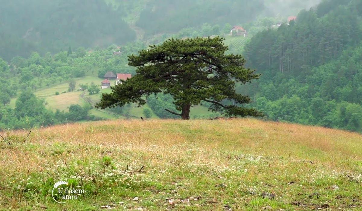 Agrosaveti - Finansiranje zaštićenih prirodnih područja u Srbiji 02