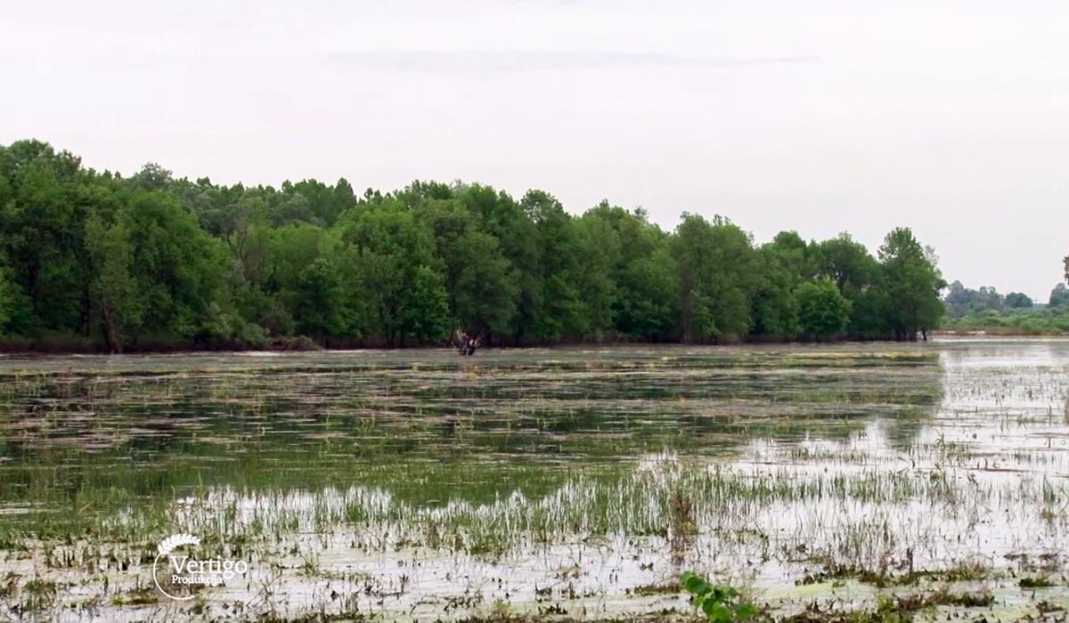 Agrosaveti - Finansiranje zaštićenih prirodnih područja u Srbiji 07