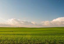 Agrosaveti - Godišnji program izdavanja državnog zemljišta 01