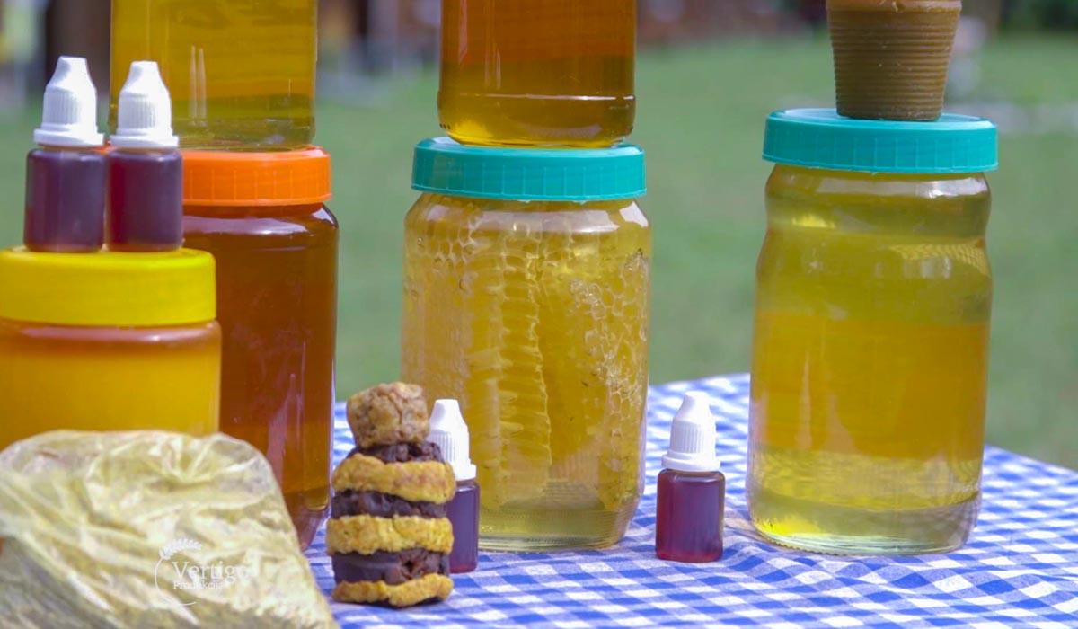 Agrosaveti - Proizvodnja meda u Somboru 01