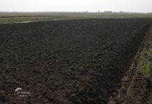Agrosaveti - Sertifikacija zemljišta za organsku proizvodnju 01