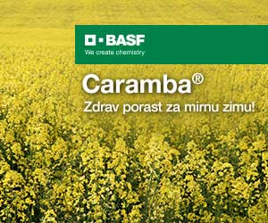 BASF - Caramba-300x250px