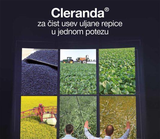 Agrosaveti---BASF---uljana-repica---clearfield-01