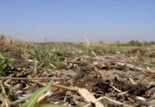 Agrosaveti - Izbor zemljišta za organsku proizvodnju 03