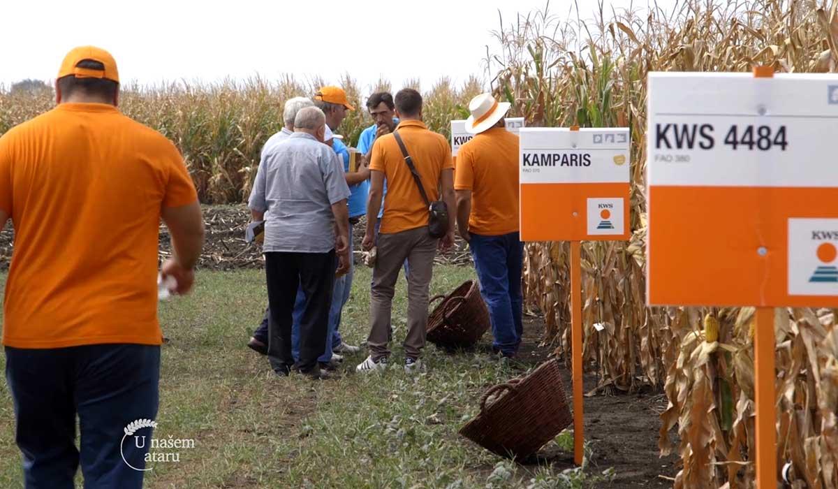 Agrosaveti - KWS Dan polja 04