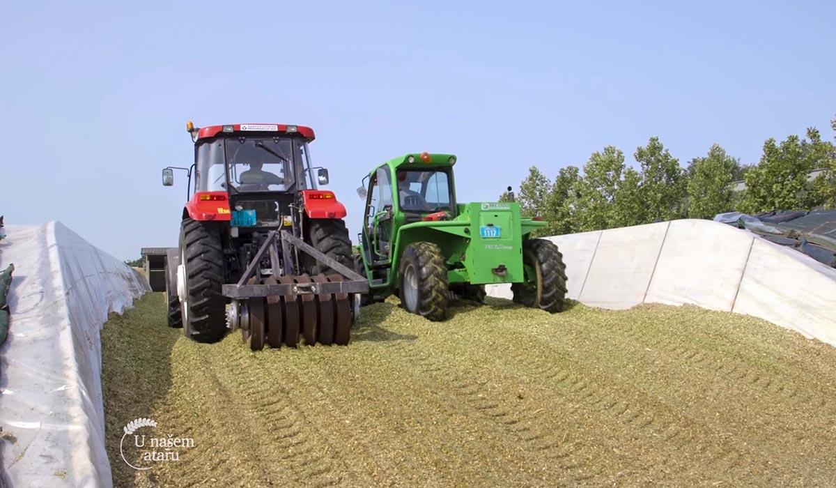 Agrosaveti - Kako napraviti savršenu silažu 06