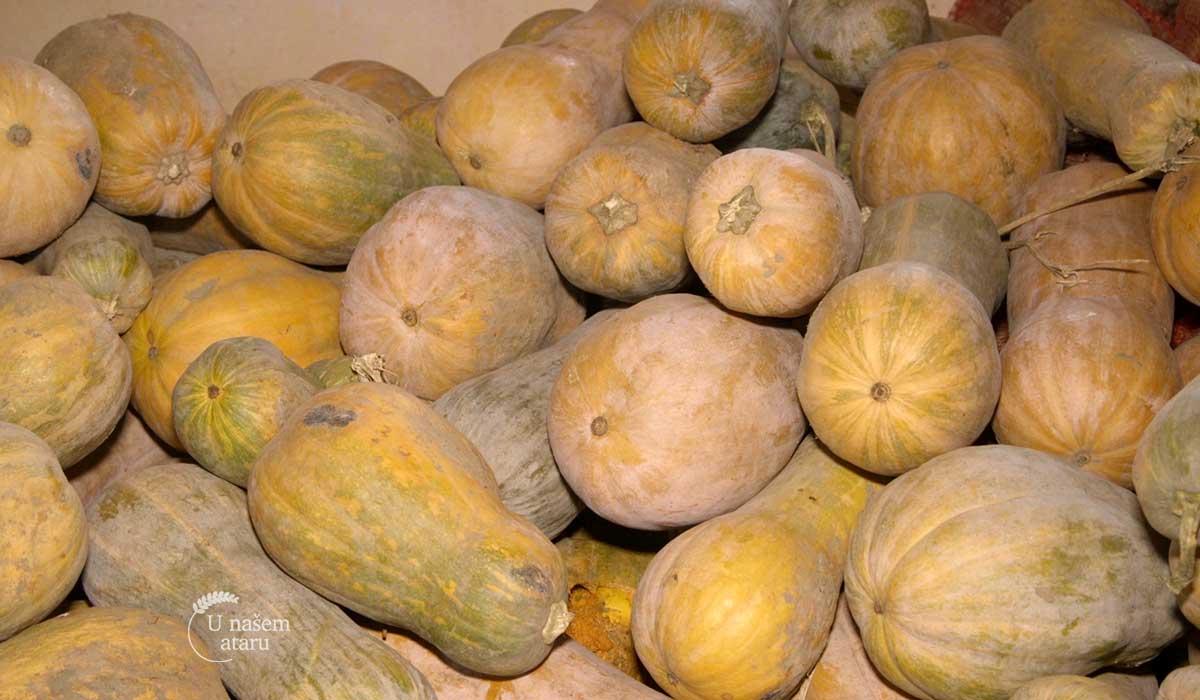 Agrosaveti - Organsko povrtarstvo 01
