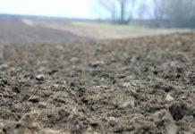 Agrosaveti - Restitucija zemljišta 01