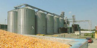 Agrosaveti - Skladištenje kukuruza 01