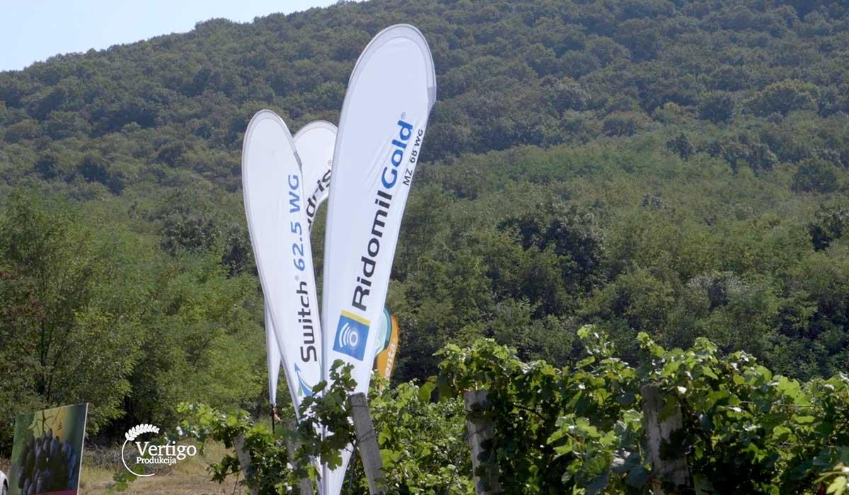 Agrosaveti - Zaštita vinove loze Syngenta 02