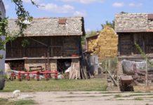 Agrosaveti - Neodustajanje od poljoprivrede 04