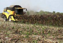 Agrosaveti - Niske otkupne cene 05