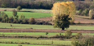 Agrosaveti - Poljoprivredne penzije 01