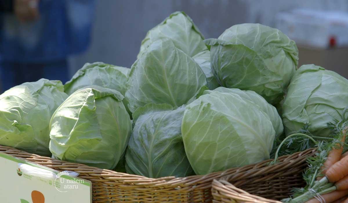 Agrosaveti - Zdrava hrana 02
