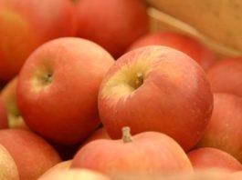 Agrosaveti - Otkupna cena jabuka 01