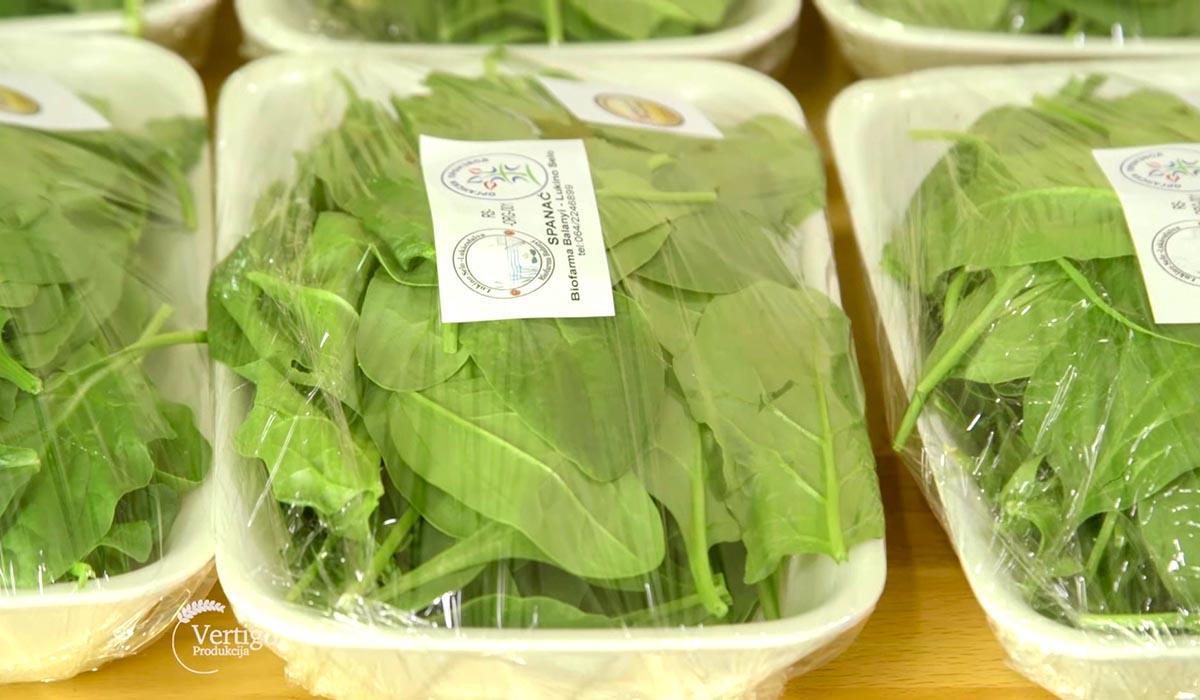Agrosaveti - Proizvodnja blitve i spanaća u plastenicima 07