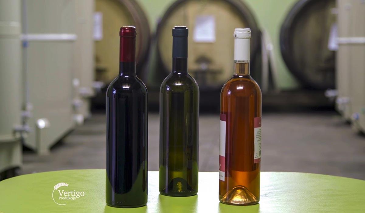 Agrosaveti - Proizvodnja vina u selu Lopušnik 02