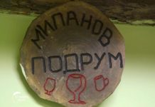 Agrosaveti - Proizvodnja vina u selu Lopušnik 04