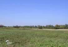 Agrosaveti - Ratarska proizvodnja u Šumadiji 04