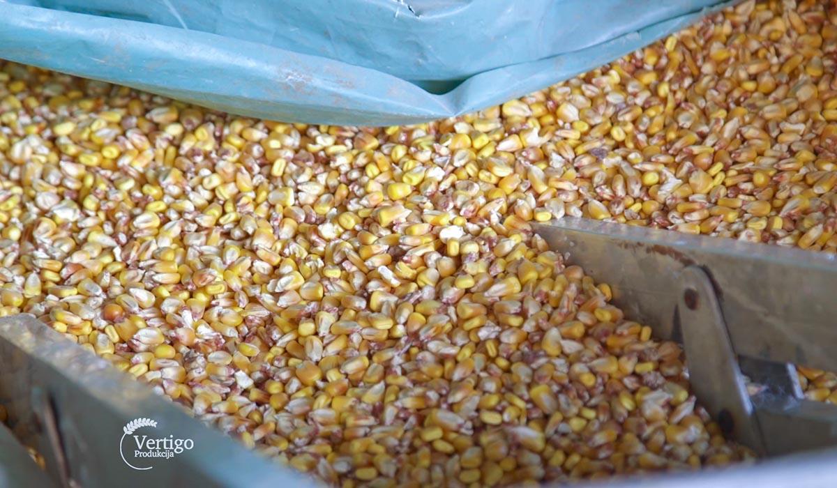 Agrosaveti - Ratarska proizvodnja u Šumadiji 06
