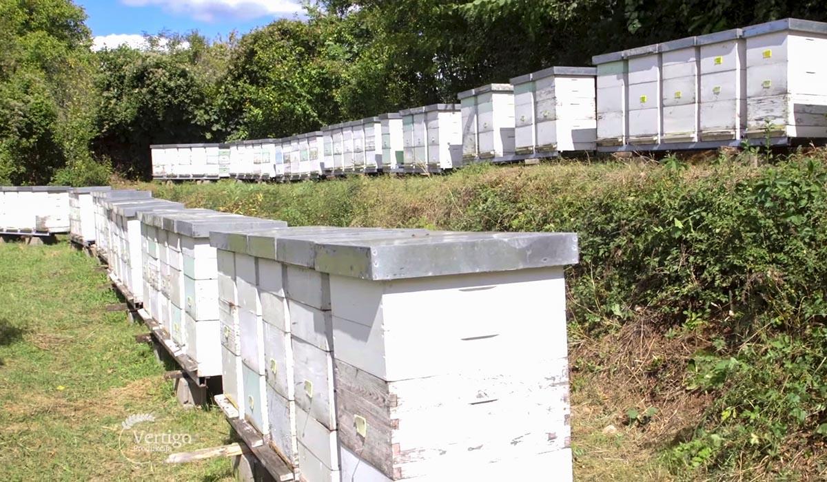 Agrosaveti - Udruženje pčelara Lipa 08