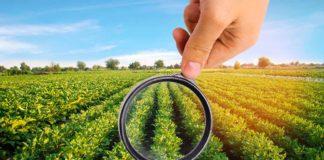 Agrosaveti - GMO 01