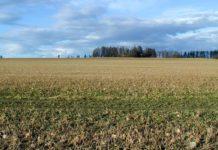 Agrosaveti - Licitacija državnog zemljišta 01