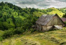 Agrosaveti - Ruralni razvoj 01