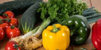 Agrosaveti---Savremena-proizvodnja-povrca