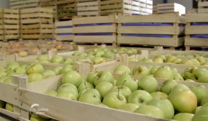 Agrosaveti---Aktuelna-cena-jabuka-u-izvozu---01